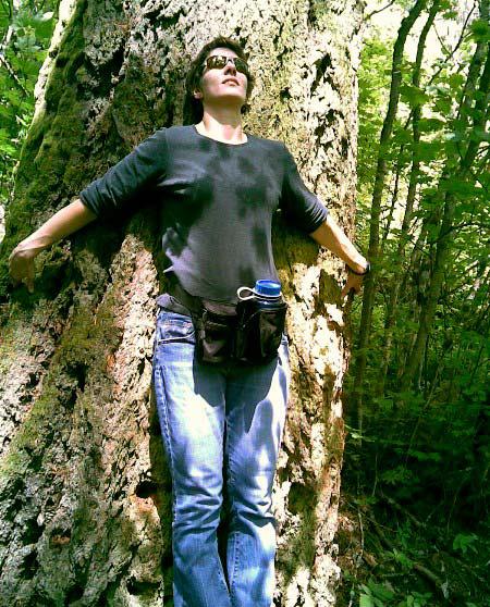 drzewo moc